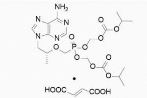 乙肝替诺福韦酯有效性肝功能继续改进抗病毒效果非常显着