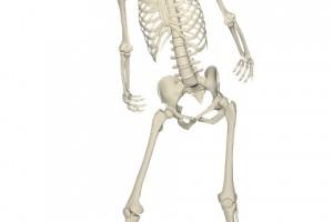 胫骨骨裂石膏胫骨骨裂的日常护理